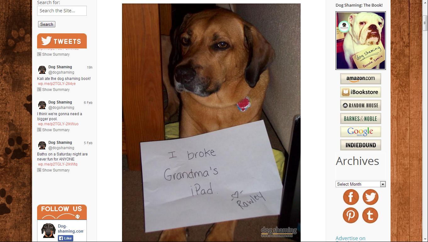 shameddog