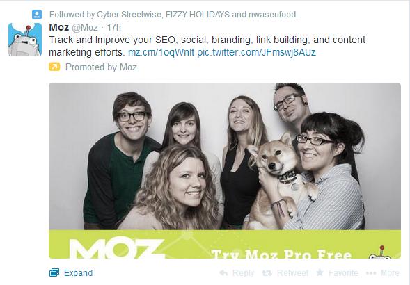 promoted tweet timeline