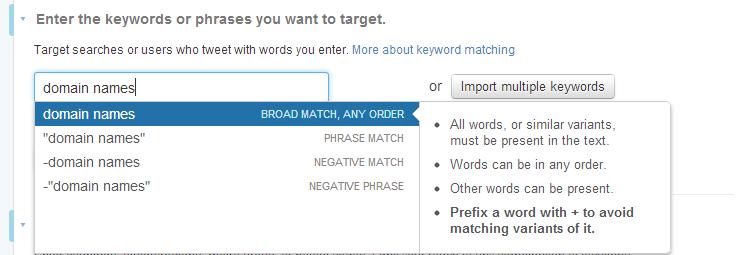 twitter domain names keyword