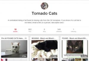 tornado cats