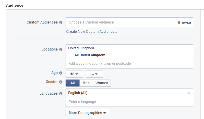 Facebook audience example