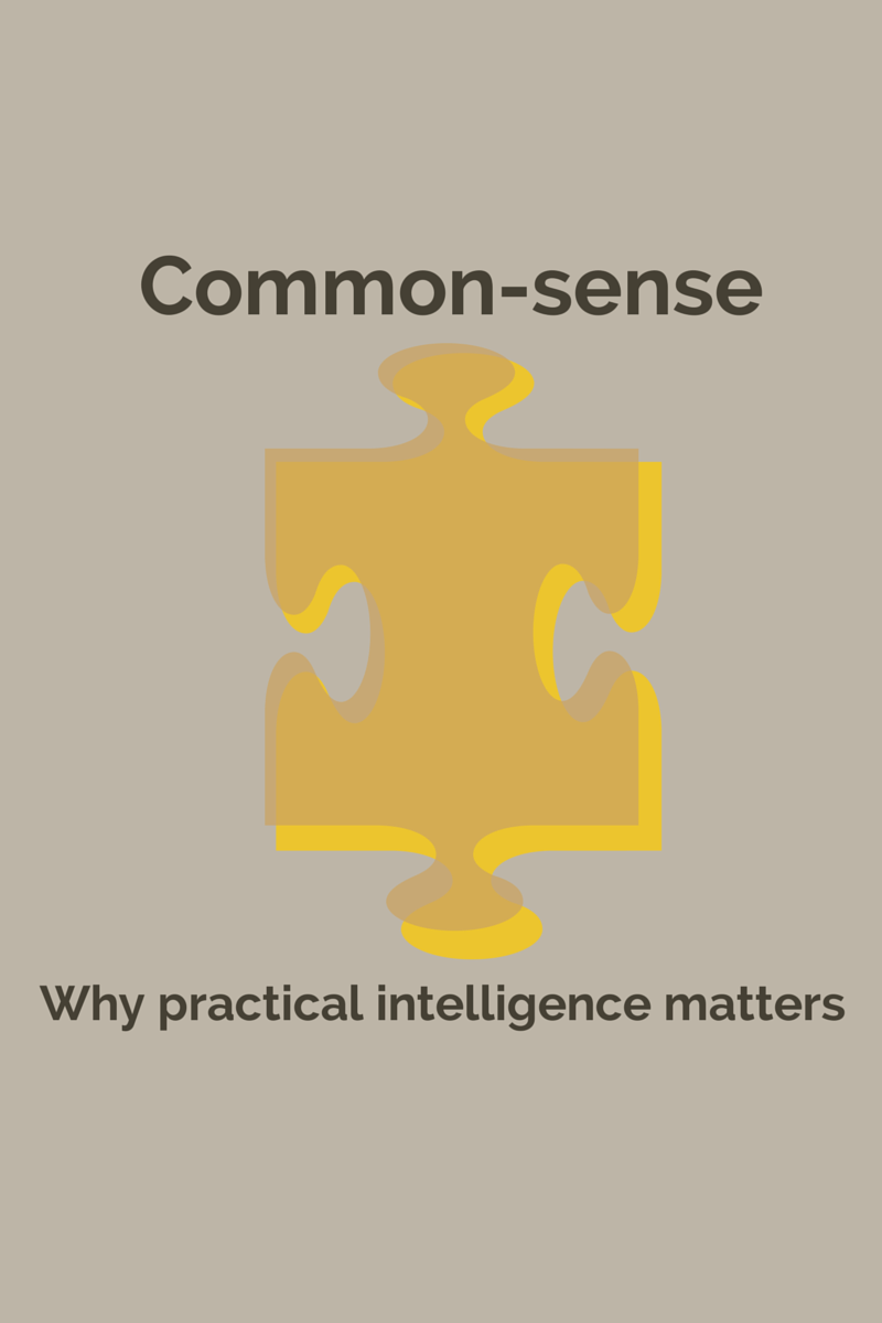 The common-sense Apprentice – Why practical intelligence matters