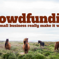 Crowdfunding – Can a small business really make it work?