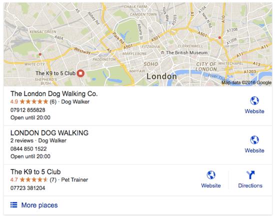 dog walker london