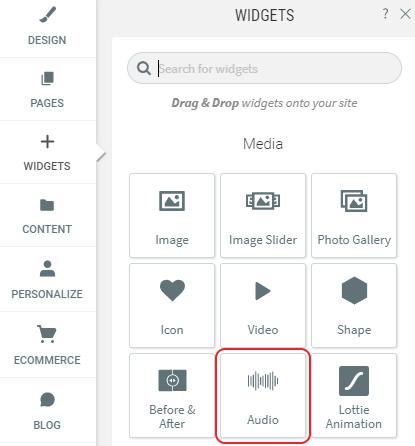 Select Audio widget