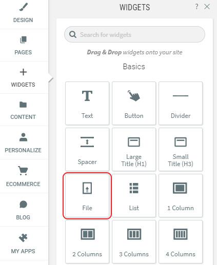 Select File Widget