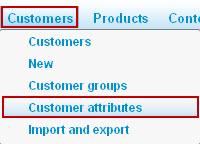 Customers_Customer_attributes.jpg