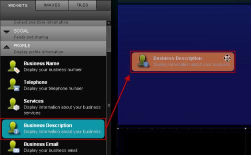 Drag_business_description_widget.jpg