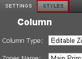 Styles_tab_zone_settings.jpg