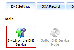 Switch_on_dns_service_icon.jpg